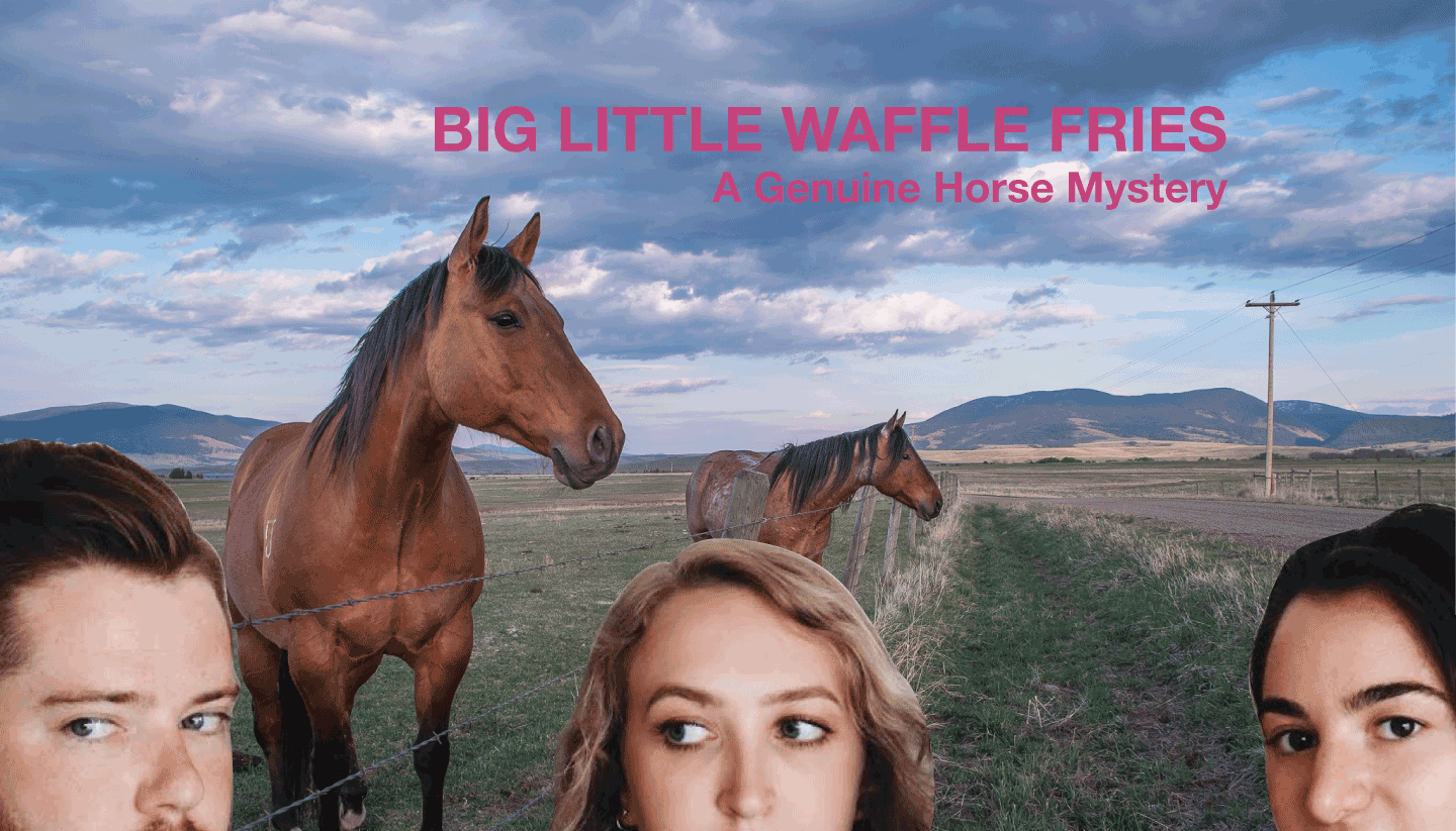Big Little Waffle Fries: A Genuine Horse Mystery
