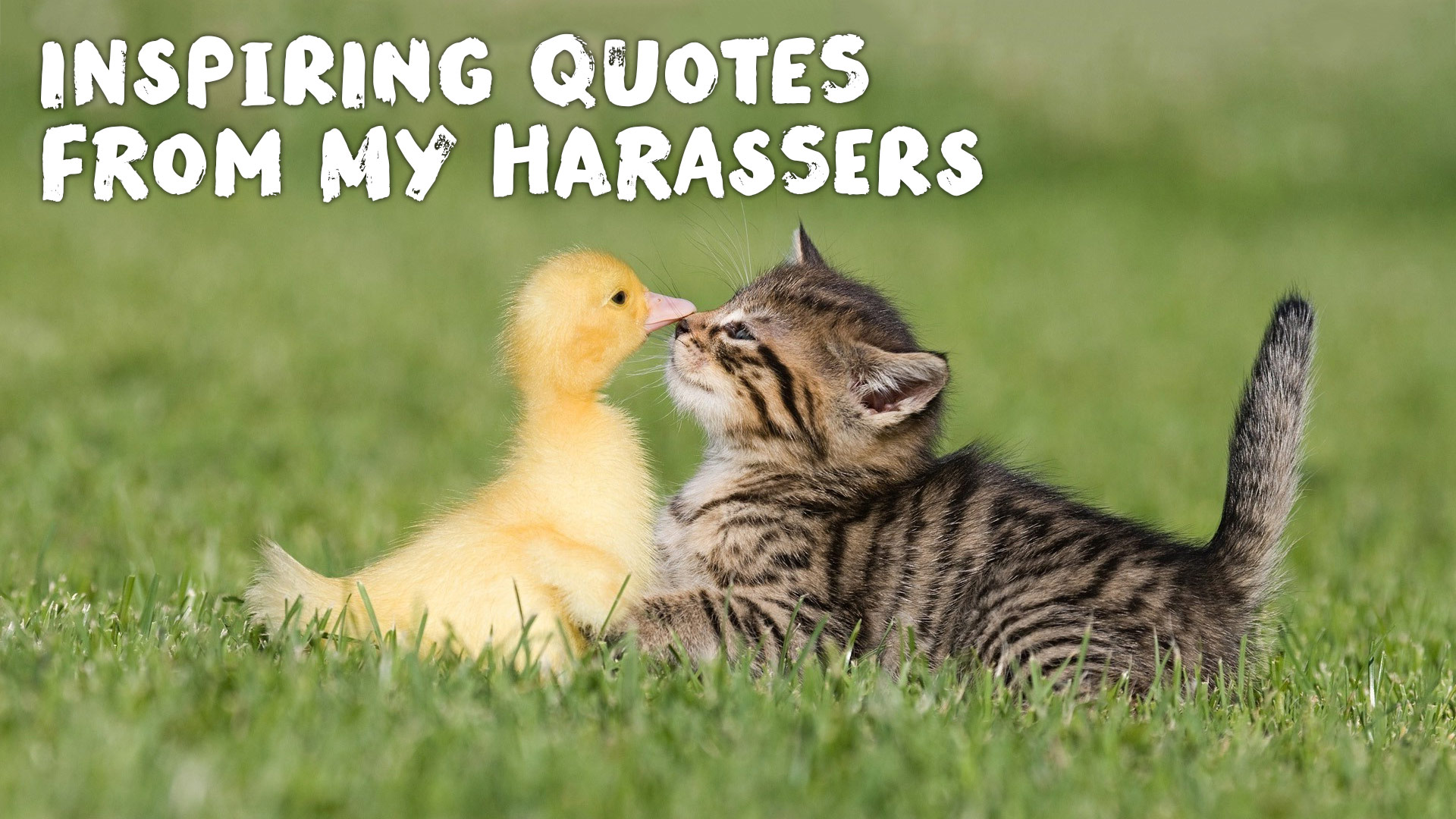 Inspiring Quotes from My Harassers