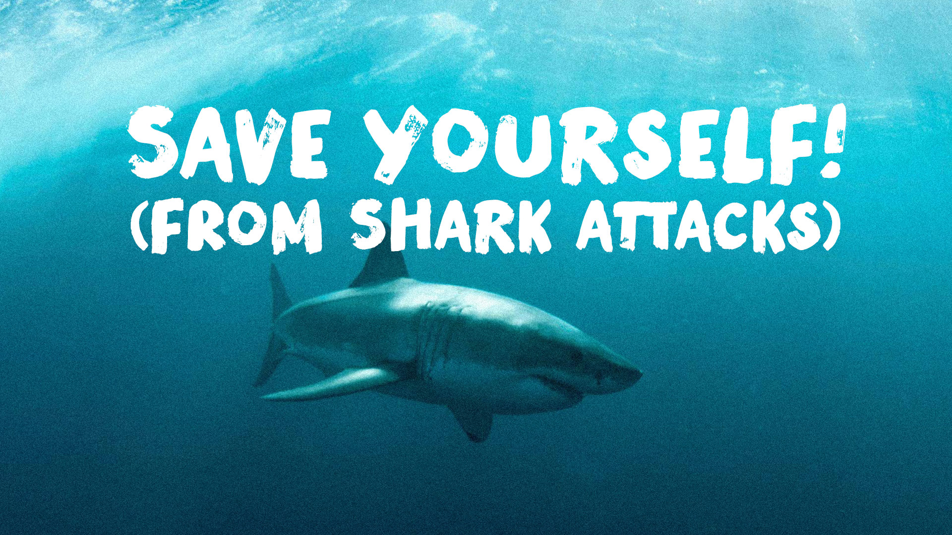 Save Yourself! (From Shark Attacks)