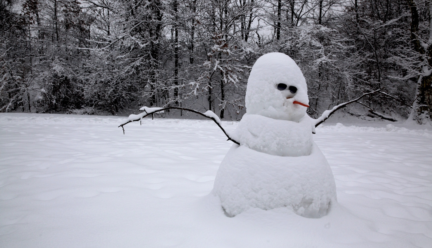 An Op-Ed By Parson Brown: The Constant Comparison To A Snowman Is Really Hurtful